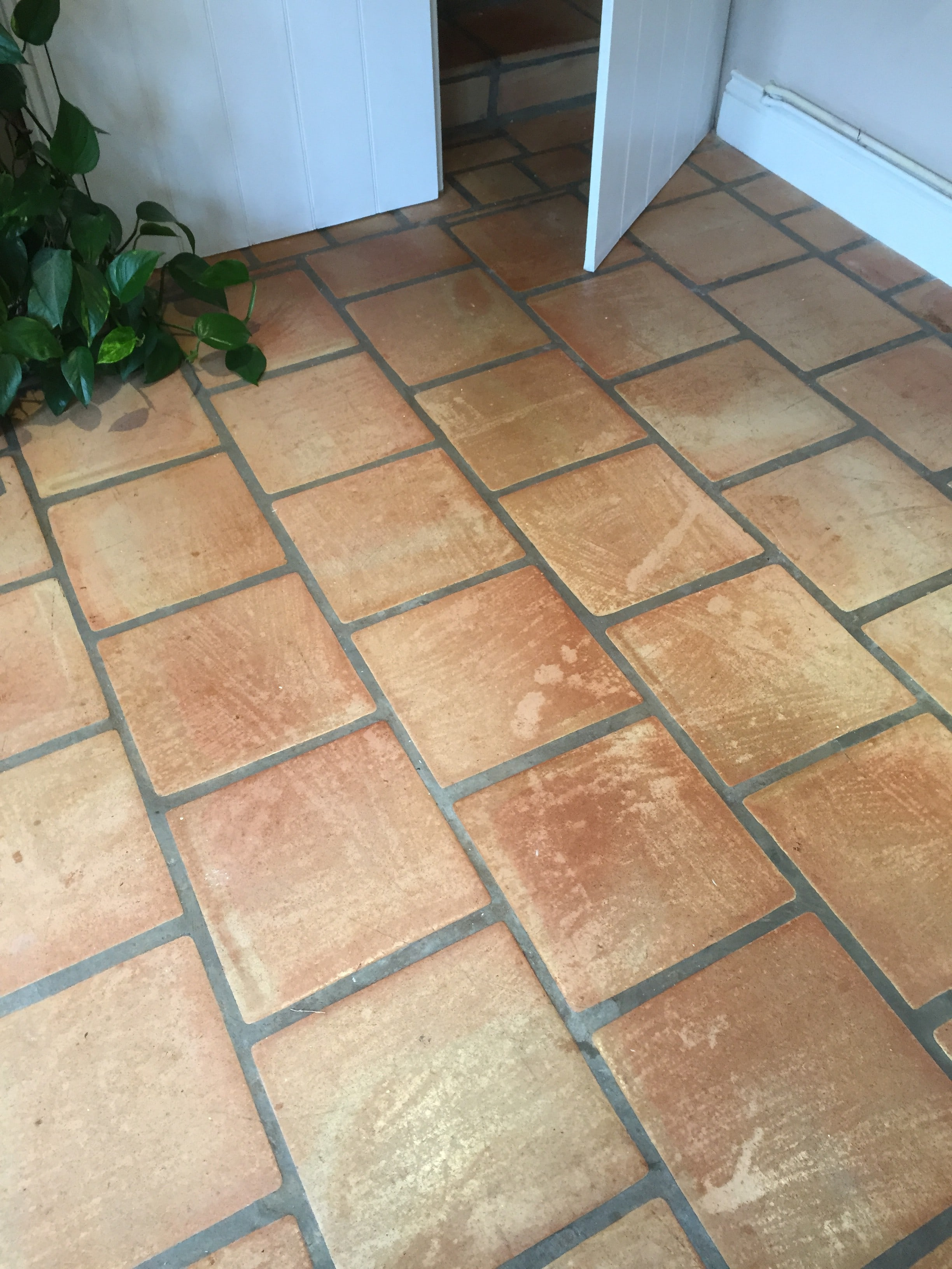 Terracotta Tiles Damaged By Bleach Before Cleaning Crewkerne